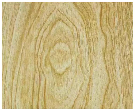榆木-北方常见树种,性价比高.png