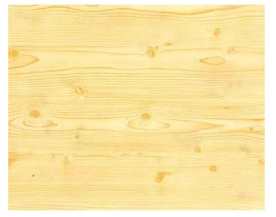 松木-常见儿童家具用材.png
