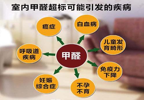 重庆网友丹丹解析负氧离子板材功能.png